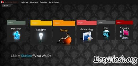 Flash CS3 dynamic website