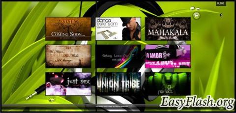 Flash Music WebSite